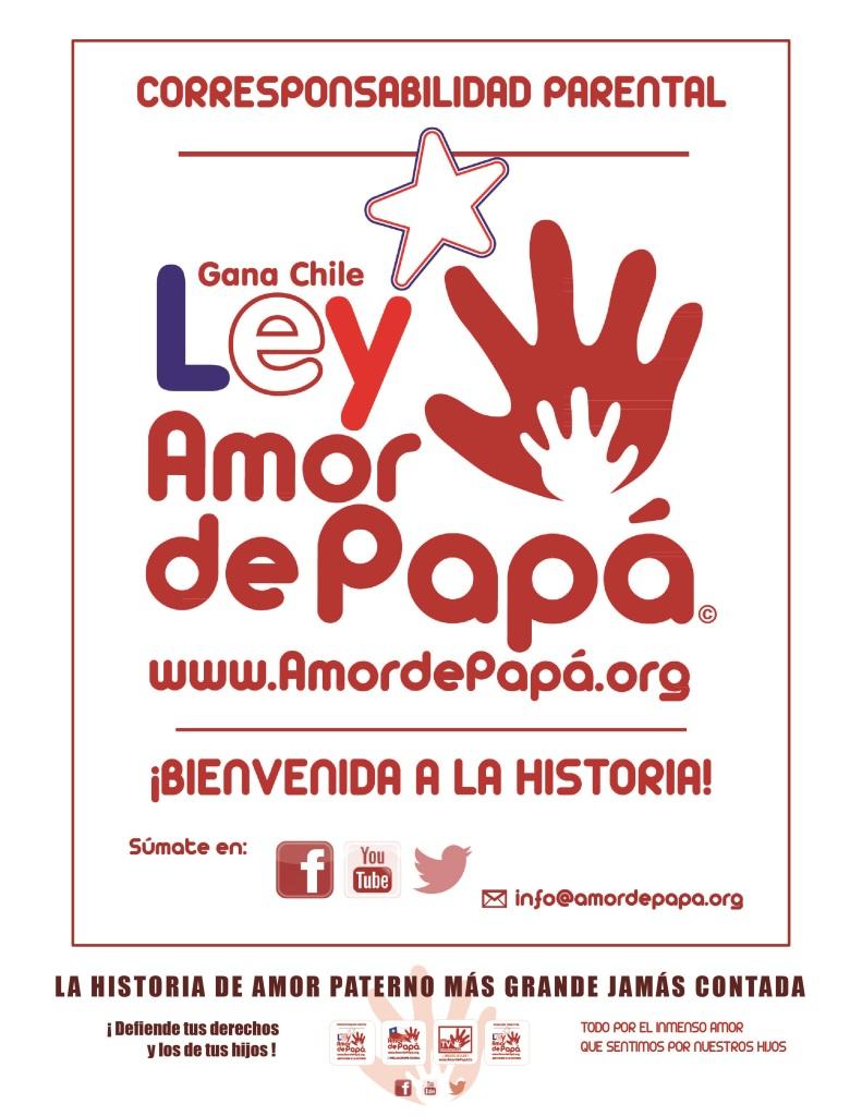 Afiche Ley Amor de Papá