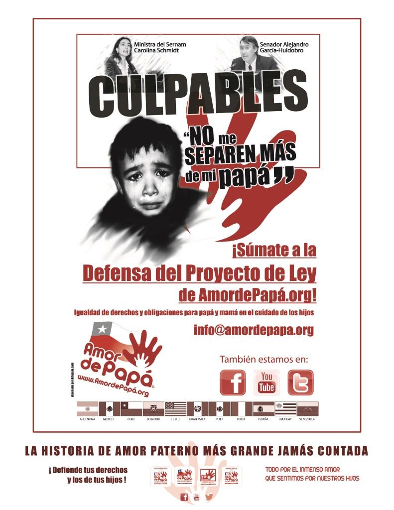 Afiche 1 Culpables